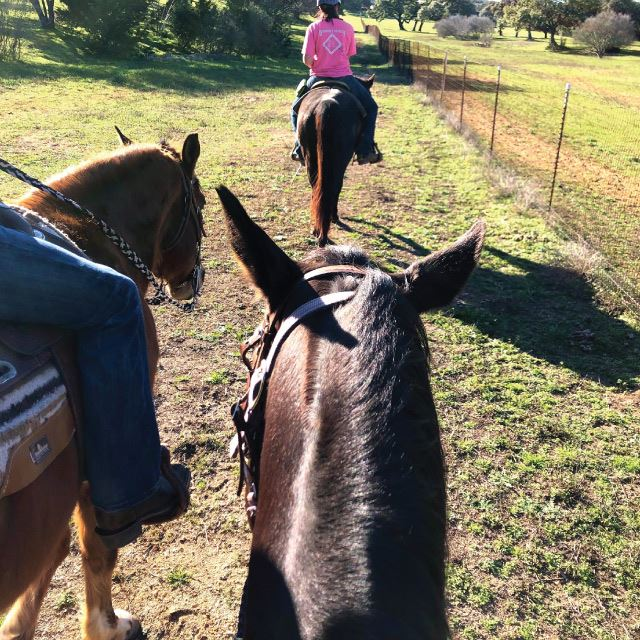 Horseback Riding in Boerne