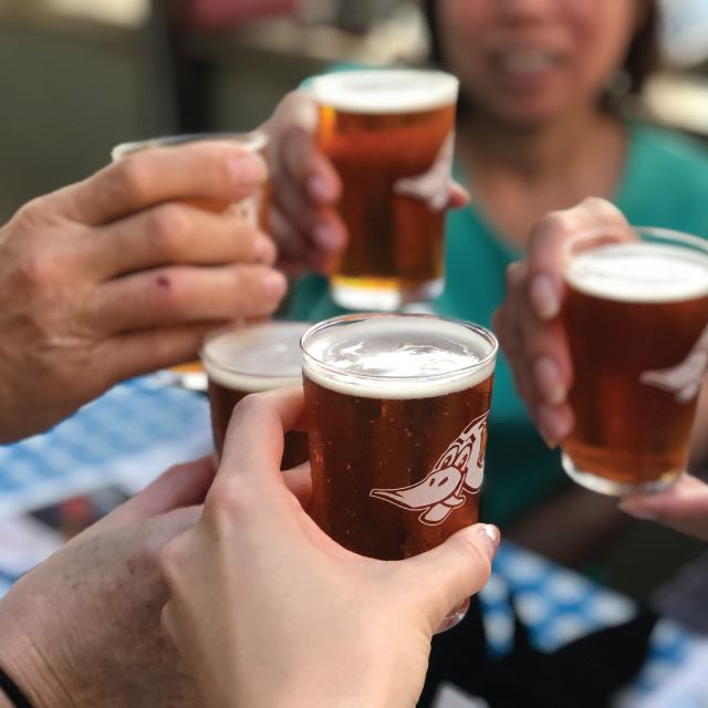 Hill Country Food Tours - Dodging Duck Brewhaus Cheers with Beers