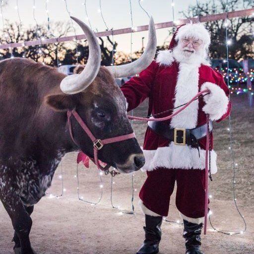 Santa With A Longhorn at Old West Christmas Light Fest