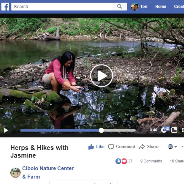 At-Home Boerne Experiences - Cibolo Nature Center Video